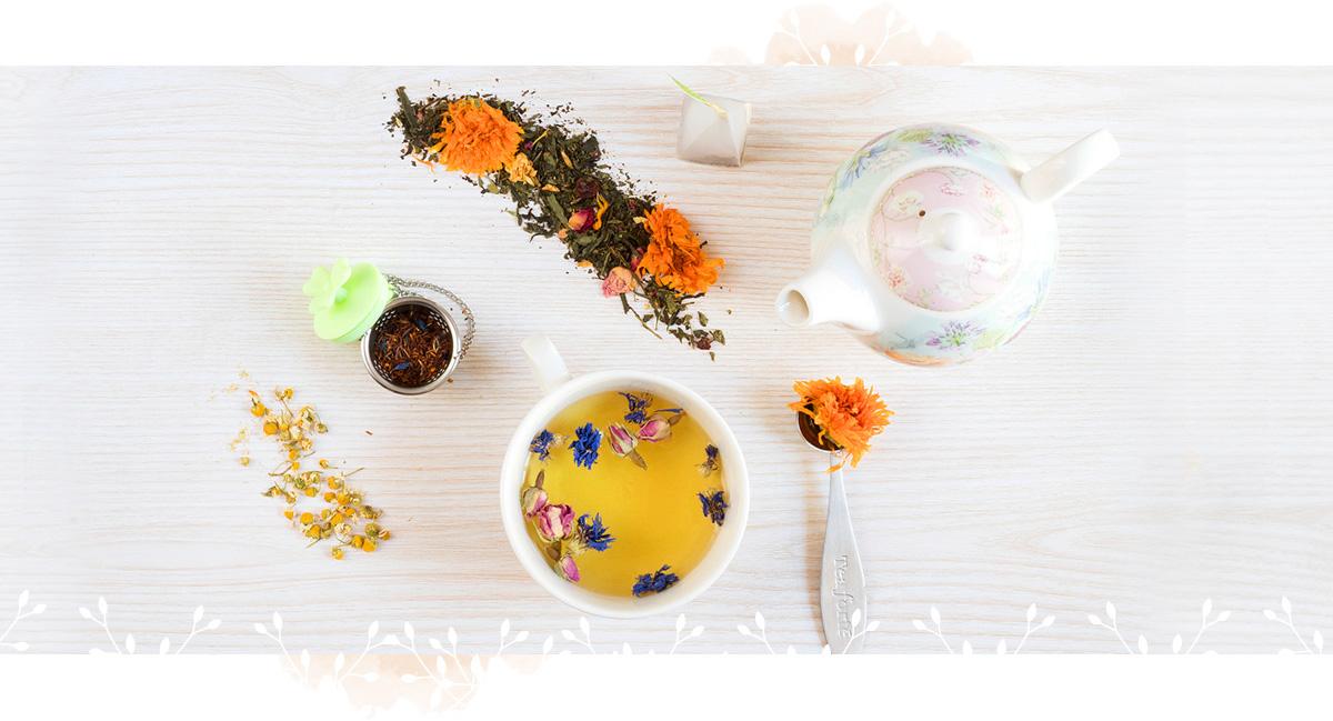 alimentazione naturale erboristeria torino