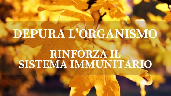Settembre, il mese ideale per aumentare le difese immunitarie